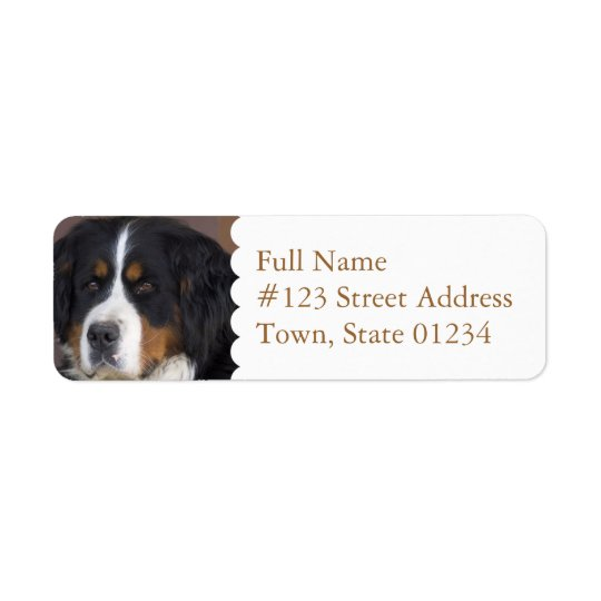 Bernese Mountain Dog Return Address Label