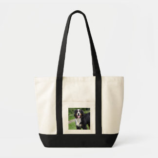 Bernese Mountain dog tote bag, gift idea