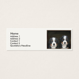 Bernese mountain dogs mini business card