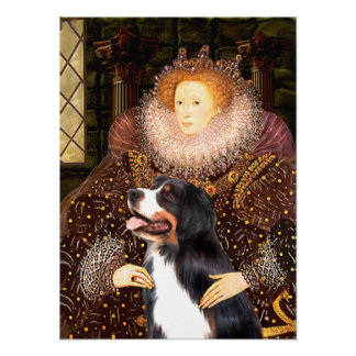 Bernsese Mt Dog - Queen Elizabeth Poster