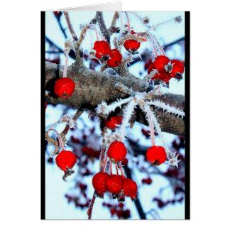 Berry Christmas! Card