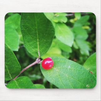 Berry in Boothbay Themed Mousepad