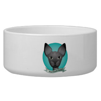 Best friends forever pet water bowl