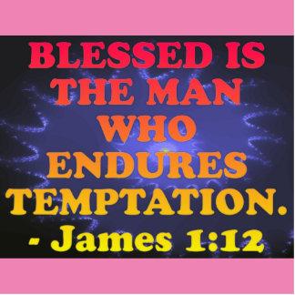 Bible verse from James 1:12. Standing Photo Sculpture