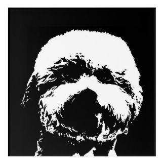 Bichon Frise Black & White Acrylic Wall Art