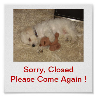 Bichon Frise Dog Closed For Business Sign