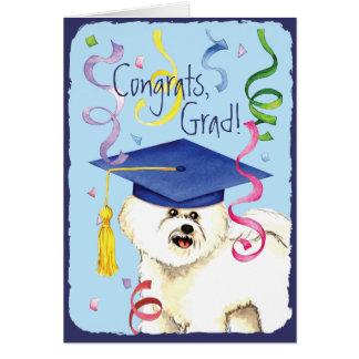 Bichon Frise Graduate Greeting Card