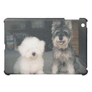 Bichon Frise Puppy and Miniature Schnauzer iPad Sp iPad Mini Cases