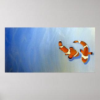 Bickering Clownfish Poster