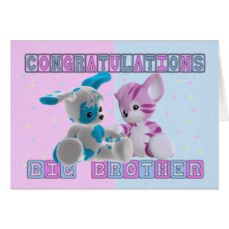 Big Brother Congratulations Card