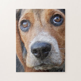 Big Brown Eyed Beagle Puppy Dog Jigsaw Puzzle