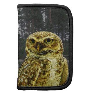 Big Eyed Owl in the Woods Mini Folio Organizer