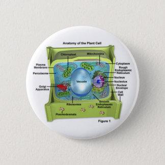 Biology 6 Cm Round Badge