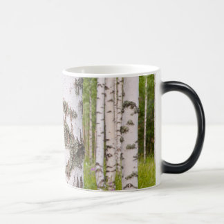birch trees in Finnish forests 11 Oz Magic Heat Color-Changing Coffee Mug