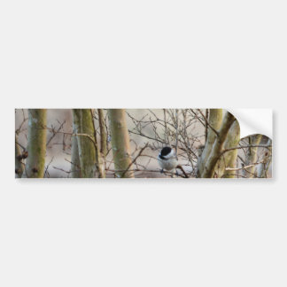 Bird Among Trees Bumper Sticker