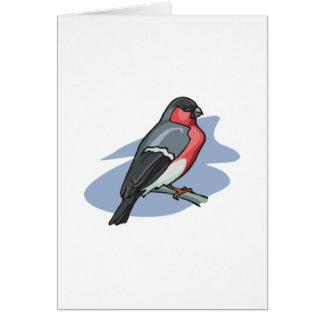Bird Bullfinch Card