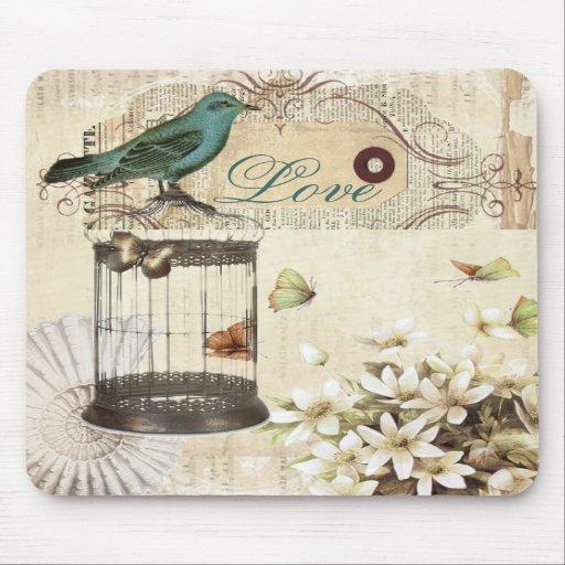 Bird cage Vintage floral  Paris fashion Mouse Pads