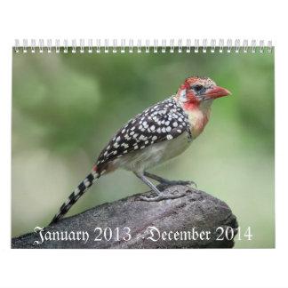 Bird Calaender 2013-2014 Calendars