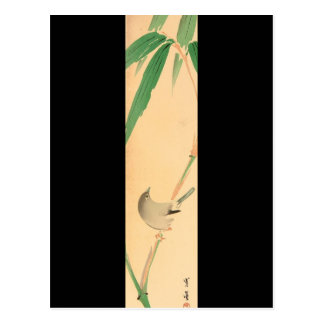 Bird on Bamboo tree by Seitei Watanabe 1851- 1918 Postcard