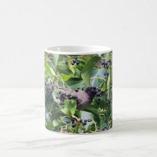 Bird snacking on a berry coffee mug
