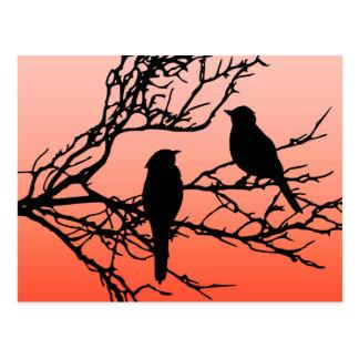 Birds on a Branch, Black Against Sunset Orange Postcard