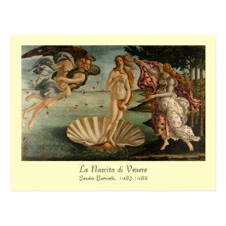 Birth of Venus Postcard