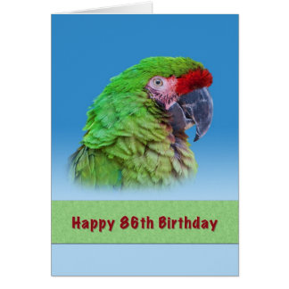 Birthday, 86th, Green Parrot Card