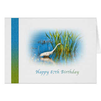 Birthday, 87th, Great Egret at the Pond Card