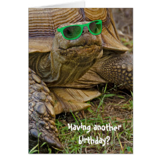 birthday humor-old tortoise in green glasses card