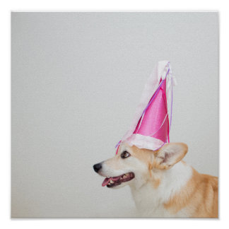Birthday Pembroke Welsh Corgi Dog Poster