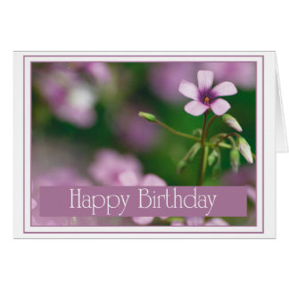 Birthday - Pink Wood Sorrel Greeting Card