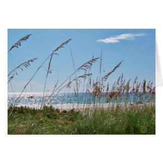 Birthday Wishes Beach and Sea Oats Greeting Card