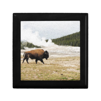 Bison and Old Faithful Gift Box