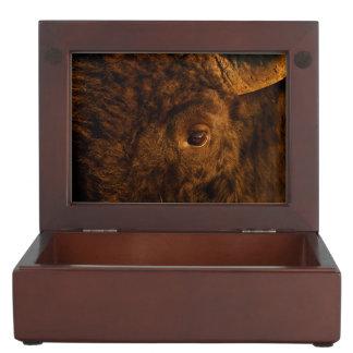 bison face keepsake box