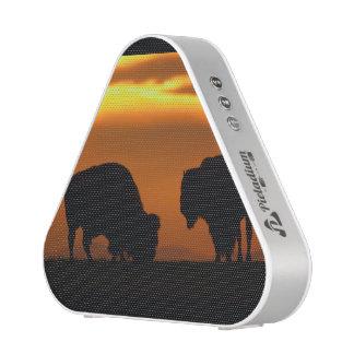 bison sunset speaker