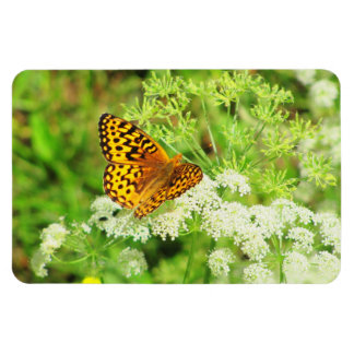 Black and Orange Butterfly on White Flowers Rectangular Photo Magnet