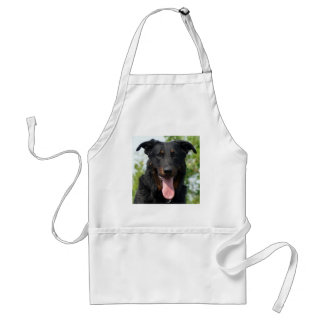 black and tan Beauceron.png Standard Apron