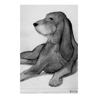 Black And Tan Coonhound Dog Portrait Poster
