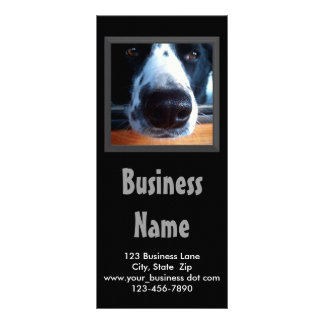 Black and White Border Collie Nose Close Up Photo Personalized Rack Card