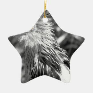 Black and White Cuckoo Ceramic Star Decoration
