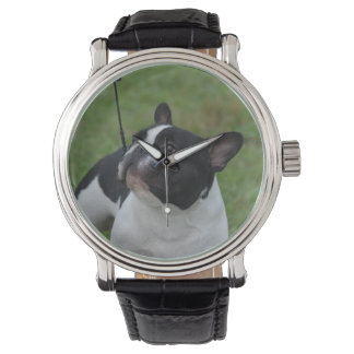 Black and White French Bulldog Watch