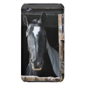 Black and White Horse iPod Touch Covers