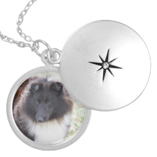 Black and White Sheltie Locket Necklace
