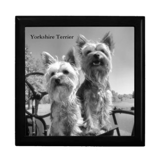 Black and White Yorkshire Terriers Gift Box