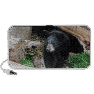 Black Bear Mp3 Speakers