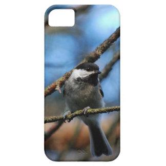 Black-Capped Chickadee Wraps Toes Around Narrow Tw iPhone 5 Cases