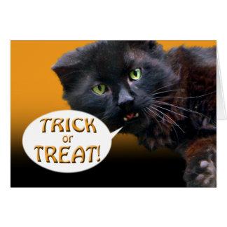 Black Cat Halloween Card Trick or Treat blank