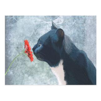 Black Cat Sniffing Flower Postcard