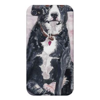 'Black Dog' iPhone 4 Case
