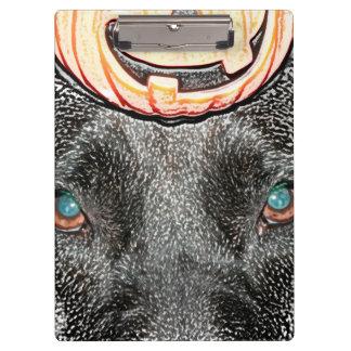 black dog pumpkin on head sketch clipboard